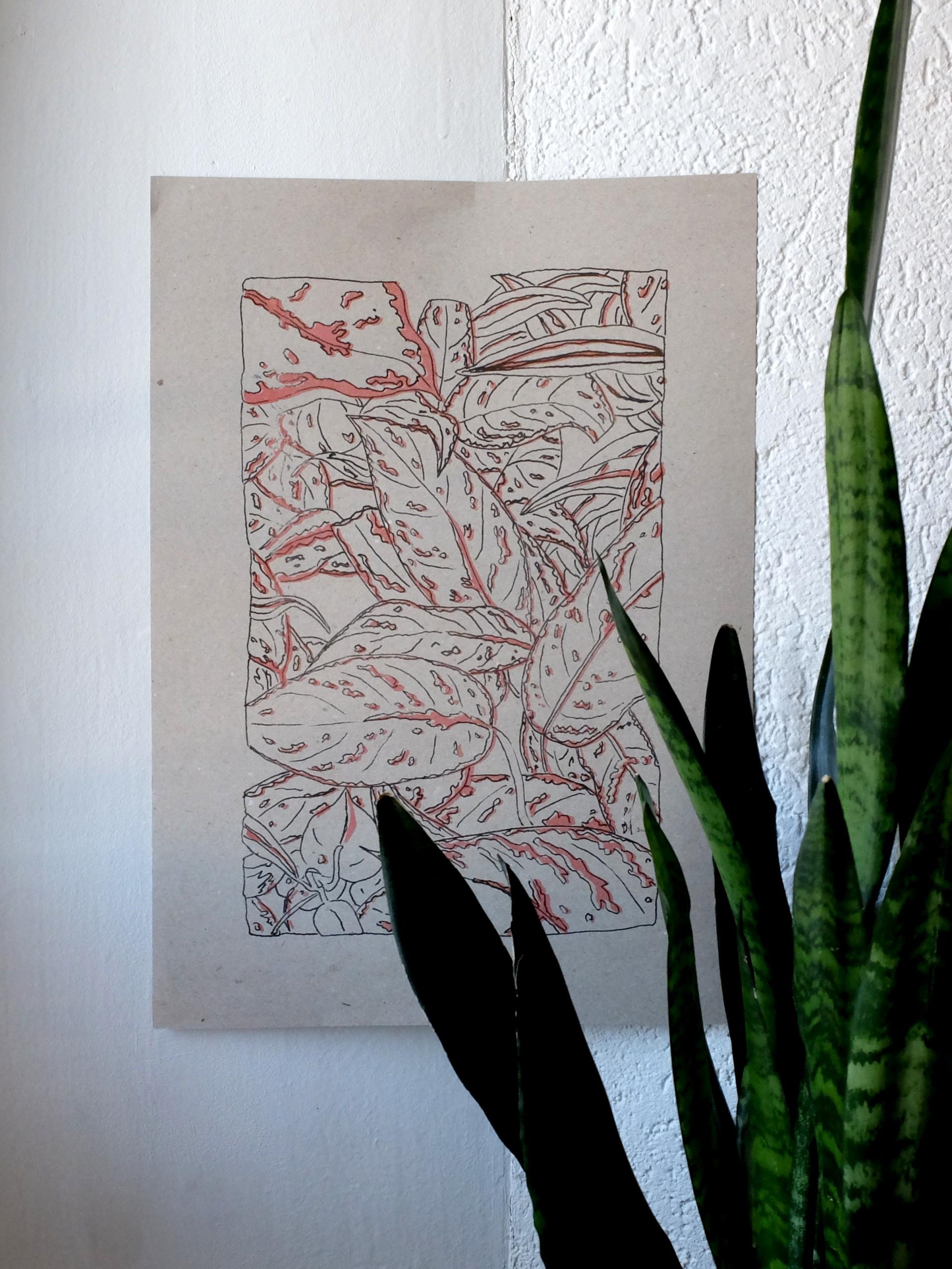Nadia de Donno plant – grey